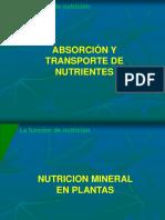 5. NUTRICIÒN MINERAL EN PLANTAS.pdf