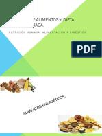 Tipos de Alimentos y Dieta Equilibrada