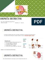 Urologia. 27-1-19