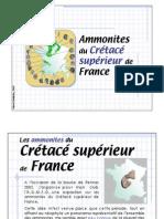 Ammonites du Crétacé Supérieur de France
