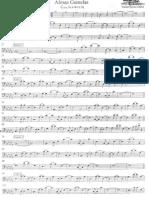 Almas Gemelas Bass