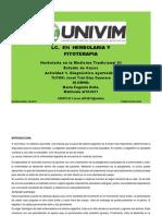 MEAavila_Diagnóstico ayurvédico