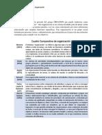 CUADRO COMPARATIVO DE LA ORGANIZACION