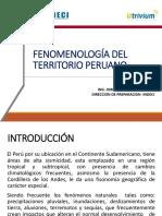 grd_c2_u1_p1_ppt_fenomenologia1_ruiz.pdf