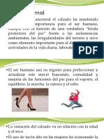 Ortesis y Protesis 1 Clase 29