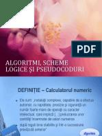 ALGORITMI, SCHEME LOGICE ȘI PSEUDOCOD.pdf