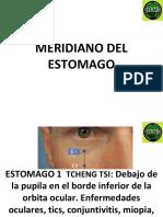 MERIDIANO DEL ESTOMAGO.pdf