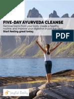 5-Day-Ayurveda-Cleanse.pdf
