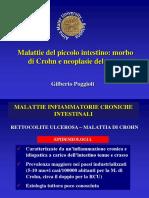 Malattie Del Piccolo Intestino%2C Crohn e Tumori 2