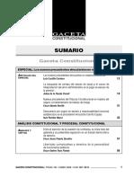 SUMARIO GC&GPC 133