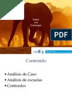 Safari_de_la_Estrategia.ppt