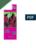 2005,-El-cultivo-de-la-mora,-G.pdf