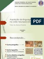 Aula Escrita Visão Neuropsicológica