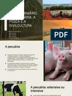 asivilculturaopescaepecuaria1