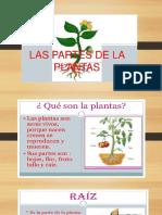 LAS+PLANTAS (1)