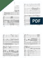 Piccolo-Haydn Score Cello Concerto in D Major Op101 HobVIIb2 Full Score (Trascinato)