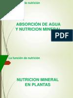 5. Nutrición Mineral en Plantas (1)