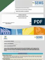 589_5.2.14.2_IMPLEMENTACION_DE_PROYECTOS_MECATRyiNICA_2011