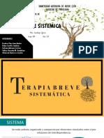 Terapia Breve Sistemica Clase (1)