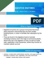Digestive Enzymes by Jaja