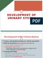 Development of Urogenital System