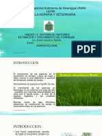 Sistemas de pastoreo.pptx
