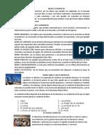 BIENES ECONOMICO1
