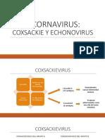 PICORNAVIRUS.pptx