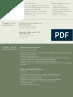 Curriculum Vitae. Andrés Navarro.