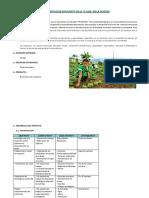 Implementacion Biohuertos en La i.e (1)