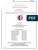 b4 Final Report Survey Word PDF