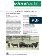 Developing an Effective Breeding Plan for Your Beef Business