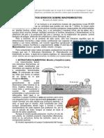 Curso_Micologia_Basico.pdf