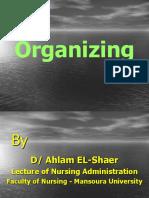 organizing_2009-2010
