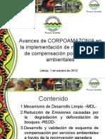 Avances en la implementación de mecanismos de compensación por SA
