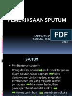 Pemeriksaan Sputum
