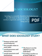 check out 8faf2 c135c What is Sociology