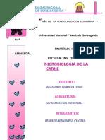 30781766-MICROBIOLOGIA-DE-CARNES.doc