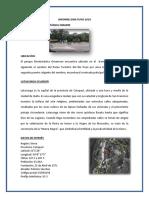 Informe Gira Puyo 2019
