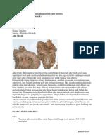 21. Juknis Pengembangan RPP _ISI-Revisi__1111