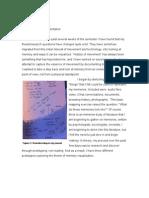 Scher_ResearchDocumentation_092010