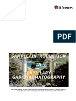 gc-injections-manual.pdf
