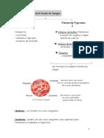 Resumos Sistema Circulatório