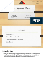 Mini-projet-tibou.pptx