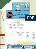 Presentación CELULA- 15.pptx