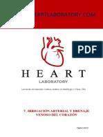 como se nutre el corazon - vasos.pdf