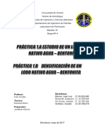 Fluidos de Perforación - Energy API (1)
