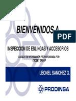 Inspeccion de eslinga y accesorios L.S. N° 3.pdf