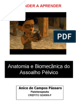 Anatomia e Biomecânica do Assoalho Pélvico