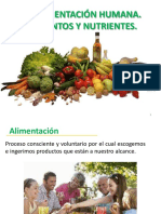 Los Nutrientes, Clasificacion y Tipos
